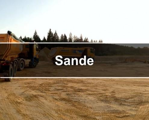 sande_570x470j